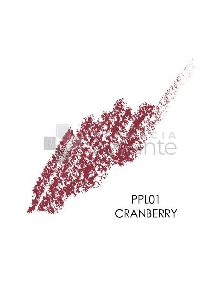 PALLADIO LAPIZ DE LABIOS DE PRECISION 01 CRANBERRY
